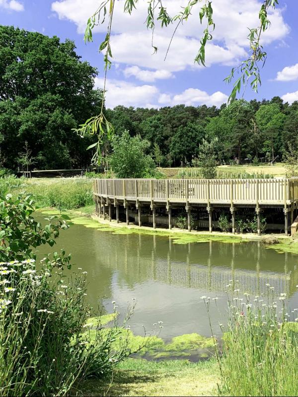 Village Pond2