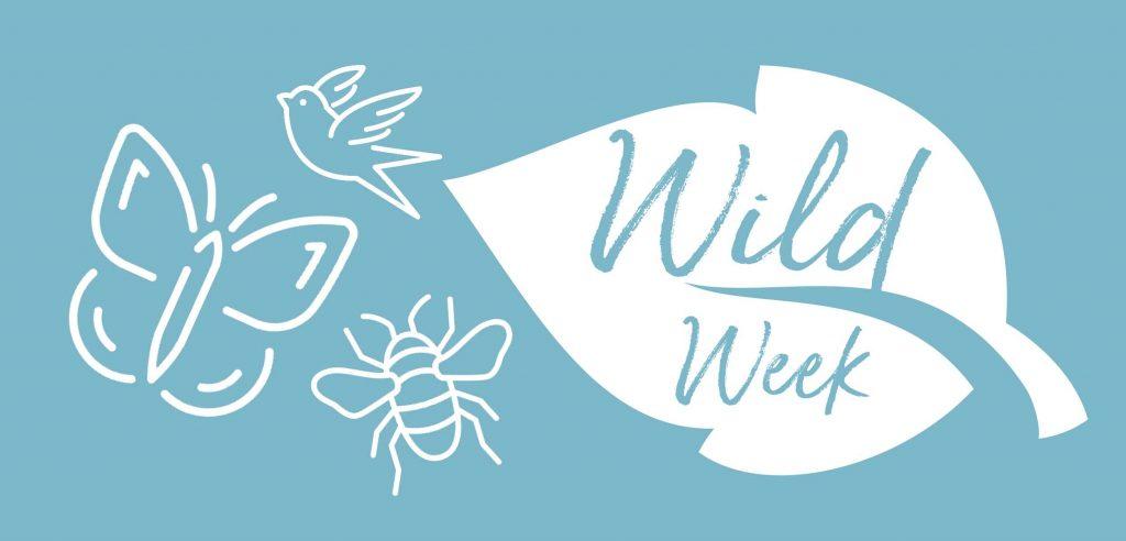 Mindenhurst Wild Week