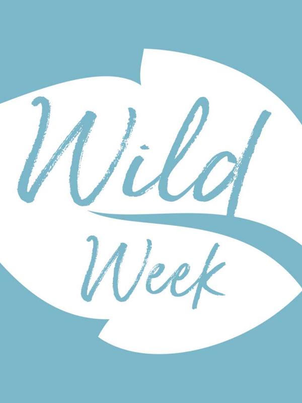 Wildweek Web header